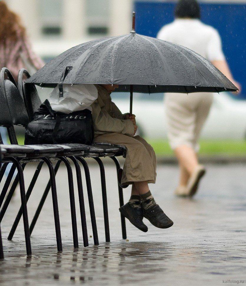 после дождя прикольные картинки обращай внимания сплетни