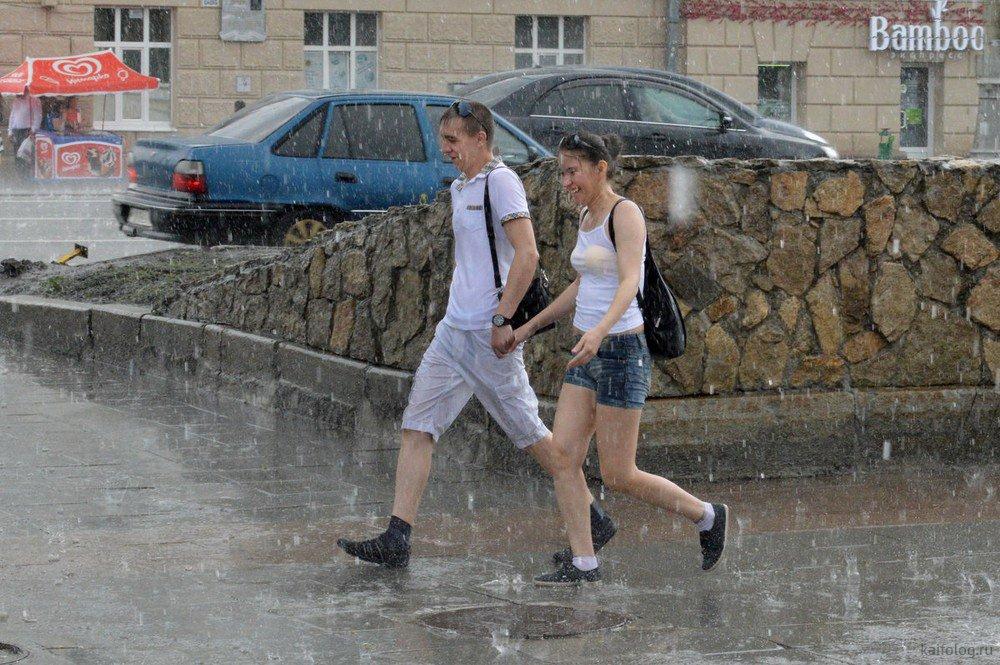 После дождя прикольные картинки