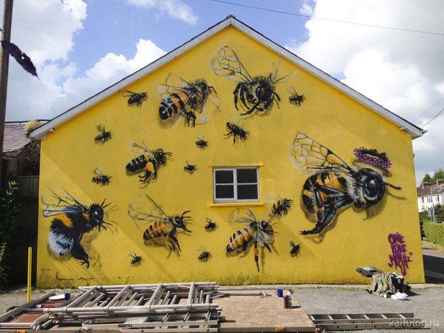 День пчёл (40 фото)