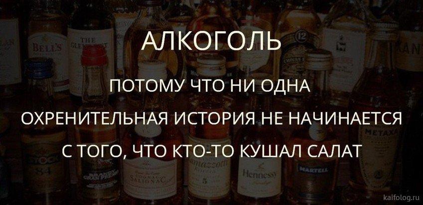 лучшей афоризмы про алкоголь смешные картинки всего запястье бьют