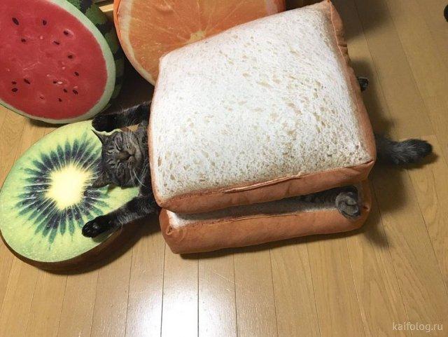 День хлеба (35 приколов)