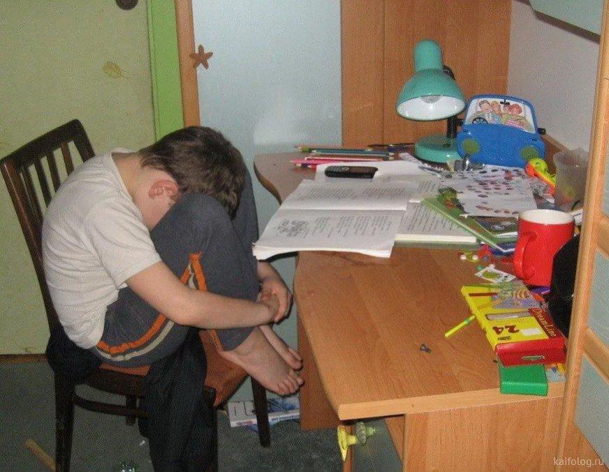 Картинки делаем уроки с ребенком смешные