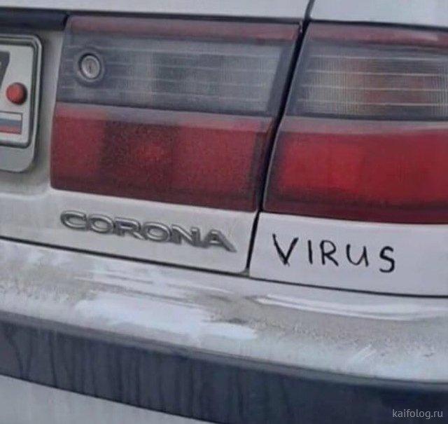 Коронавирус атакует (40 фото)