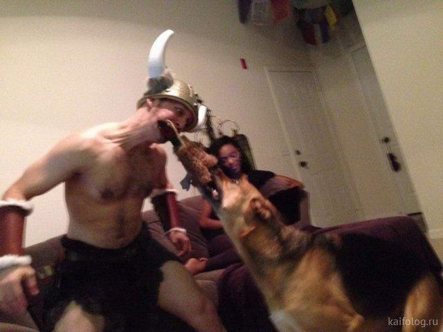 Забавные зверюшки (35 фото)