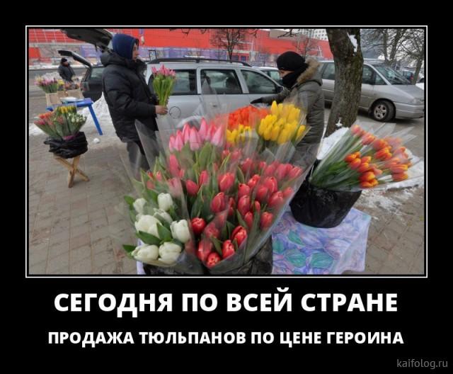 Приколы и поздравления на 8 марта (40 картинок)