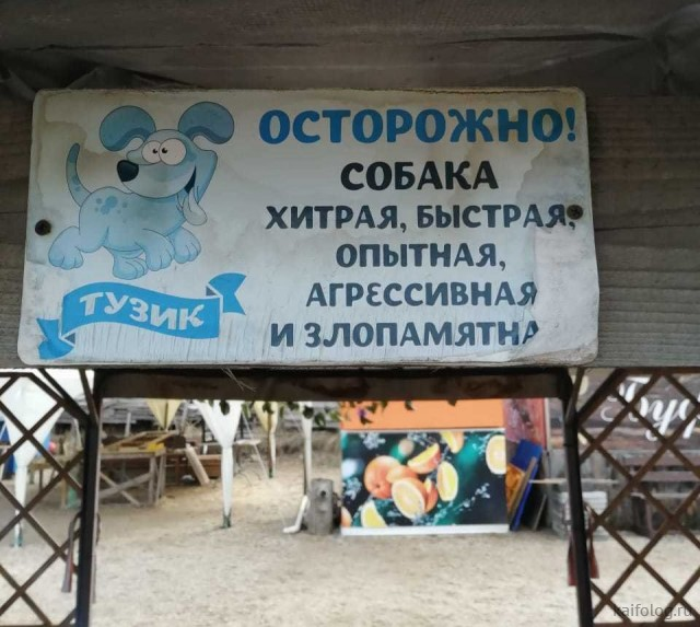 Подборочка приколов (35 фото)