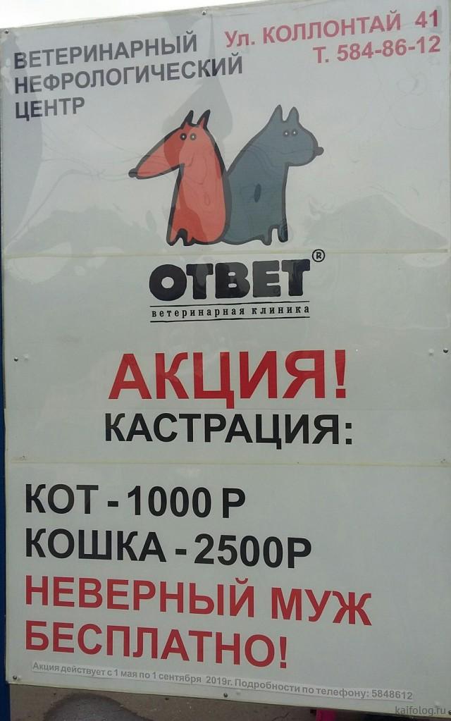 День ветеринара (50 приколов)