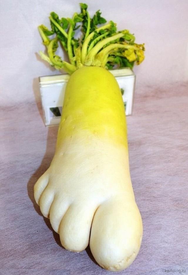 Прикольные овощи и фрукты (45 фото)